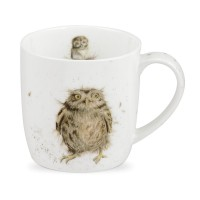 Royal Worcester Owl Mug